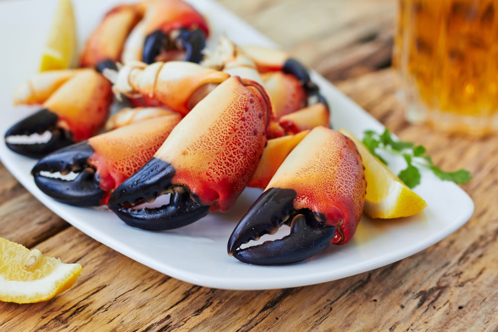 The Best Places In Key West For Stone Crab: The Southernmost Inn